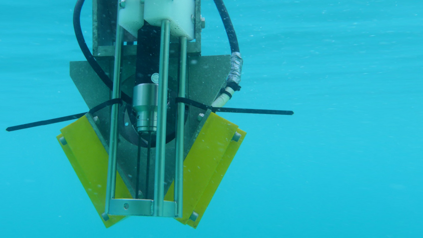 Bathyswyath-2 Standard underwater view